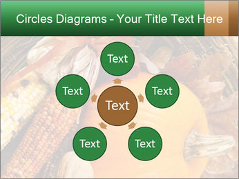 A colorful orange pumpkin PowerPoint Template - Slide 78