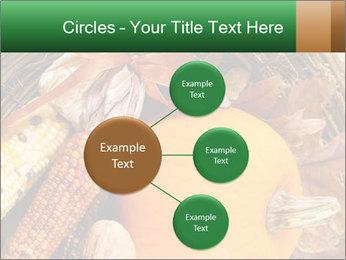 A colorful orange pumpkin PowerPoint Template - Slide 79