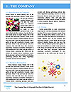 0000092676 Word Template - Page 3