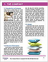 0000092684 Word Template - Page 3