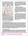 0000092684 Word Template - Page 4