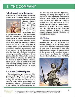 0000092688 Word Template - Page 3