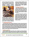 0000092689 Word Template - Page 4