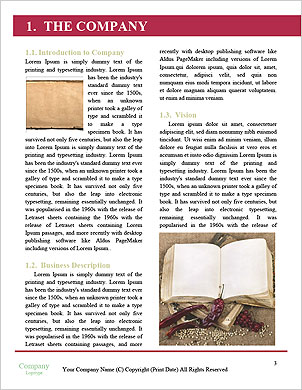 0000092691 Word Template - Page 3