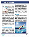 0000092701 Word Template - Page 3