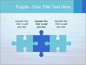 Water PowerPoint Templates - Slide 42