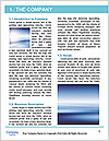 0000092705 Word Template - Page 3