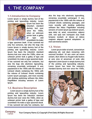 0000092706 Word Template - Page 3