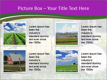 Banjo in a field PowerPoint Template - Slide 14