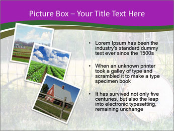 Banjo in a field PowerPoint Template - Slide 17