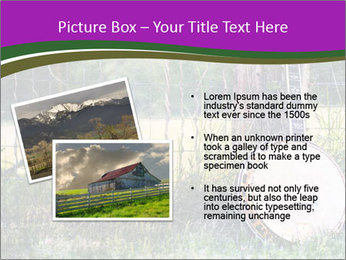 Banjo in a field PowerPoint Template - Slide 20