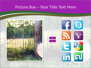 Banjo in a field PowerPoint Template - Slide 21