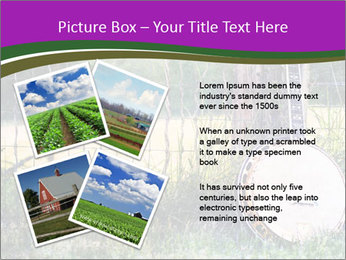 Banjo in a field PowerPoint Template - Slide 23