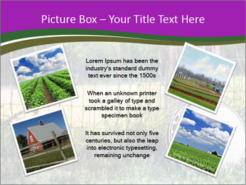 Banjo in a field PowerPoint Template - Slide 24