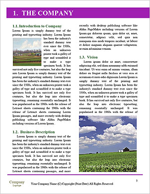 0000092711 Word Template - Page 3
