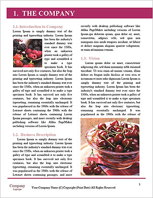 0000092712 Word Template - Page 3