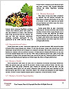 0000092712 Word Templates - Page 4