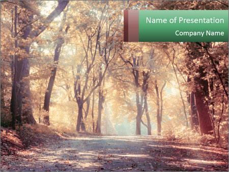 Autumn trees PowerPoint Template