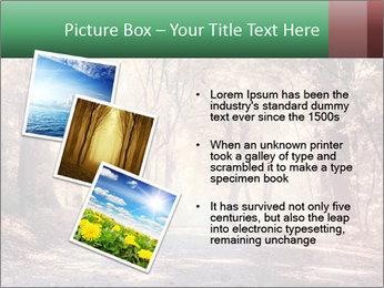 Autumn trees PowerPoint Template - Slide 17