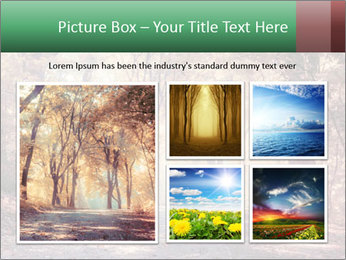 Autumn trees PowerPoint Template - Slide 19