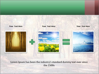 Autumn trees PowerPoint Template - Slide 22