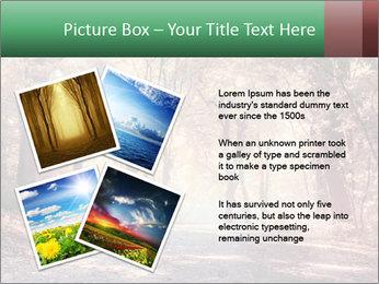Autumn trees PowerPoint Template - Slide 23