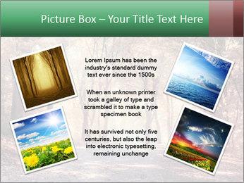 Autumn trees PowerPoint Template - Slide 24