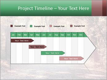 Autumn trees PowerPoint Template - Slide 25