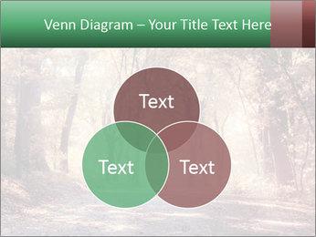 Autumn trees PowerPoint Template - Slide 33