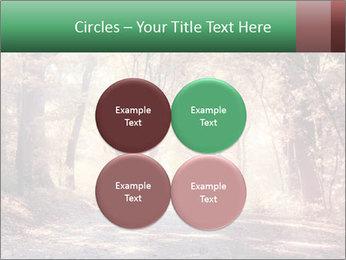 Autumn trees PowerPoint Template - Slide 38