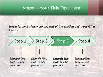 Autumn trees PowerPoint Template - Slide 4
