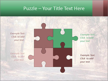 Autumn trees PowerPoint Template - Slide 43