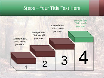 Autumn trees PowerPoint Template - Slide 64