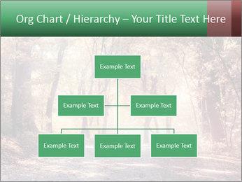 Autumn trees PowerPoint Template - Slide 66