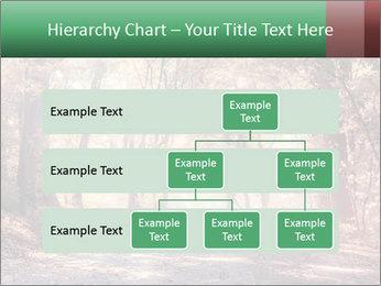 Autumn trees PowerPoint Template - Slide 67