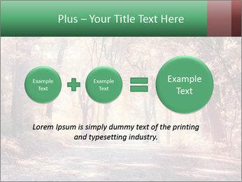Autumn trees PowerPoint Template - Slide 75