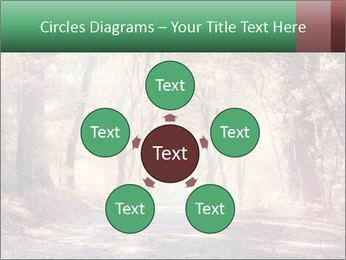 Autumn trees PowerPoint Template - Slide 78