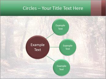 Autumn trees PowerPoint Template - Slide 79