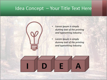 Autumn trees PowerPoint Template - Slide 80