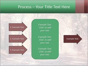 Autumn trees PowerPoint Template - Slide 85