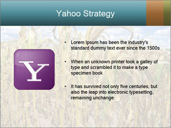 Farm PowerPoint Template - Slide 11