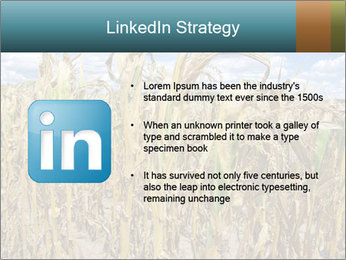 Farm PowerPoint Template - Slide 12
