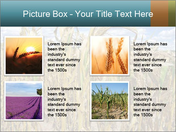 Farm PowerPoint Template - Slide 14