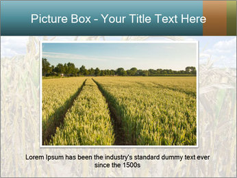 Farm PowerPoint Template - Slide 15