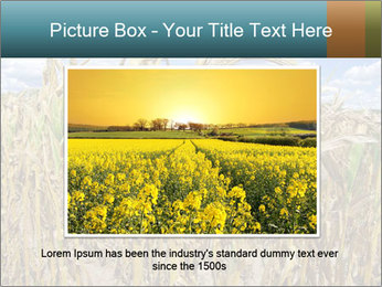 Farm PowerPoint Template - Slide 16