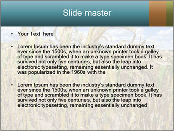 Farm PowerPoint Template - Slide 2