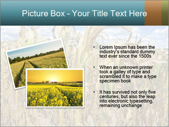 Farm PowerPoint Template - Slide 20