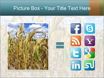 Farm PowerPoint Template - Slide 21
