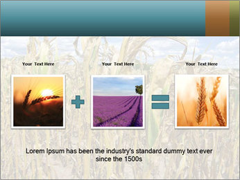 Farm PowerPoint Template - Slide 22