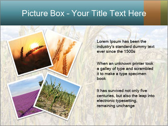 Farm PowerPoint Template - Slide 23